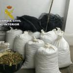 Un detenido en Villamalea (Albacete) por robar 7.000 kilos de almendra de una explotación agrícola