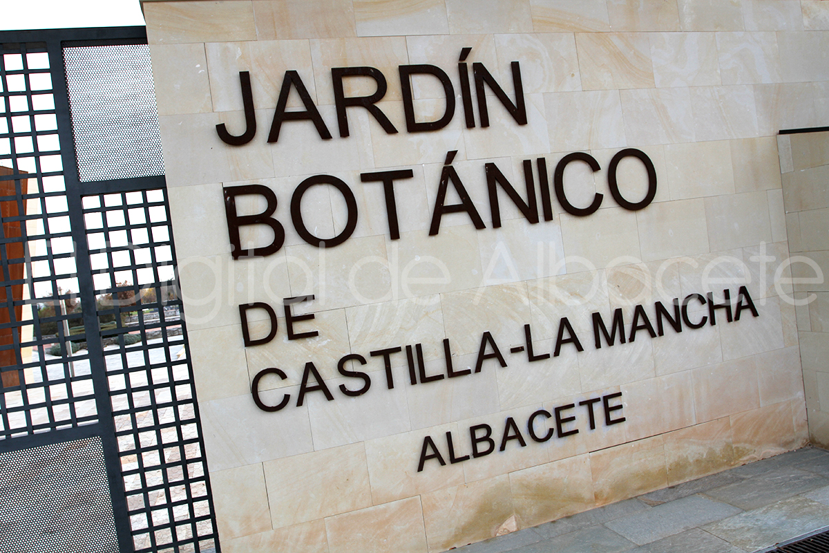 Premian la defensa de la biodiversidad del jard n bot nico for Jardin botanico albacete