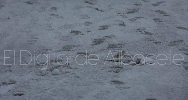 albacete_nevado_noticias_albacete-50