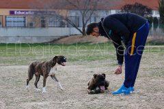 parque_canino_noticia_albacete-07