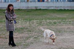 parque_canino_noticia_albacete-08
