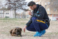 parque_canino_noticia_albacete-10