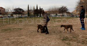 parque_canino_noticia_albacete-16