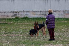 parque_canino_noticia_albacete-21