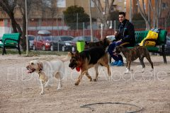 parque_canino_noticia_albacete-25