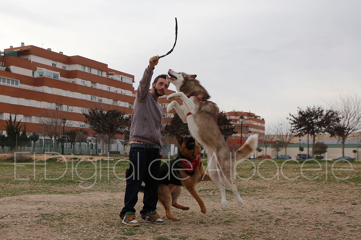 parque_canino_noticia_albacete-38