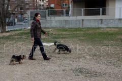 parque_canino_noticia_albacete-43