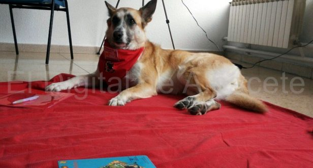 una-patrulla-canina-en-albacete-para-fomentar-la-lectura-3
