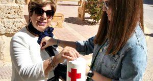 Dia Banderita Cruz Roja Madrigueras 02