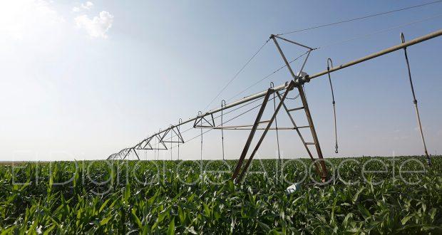 noticias albacete agricultura