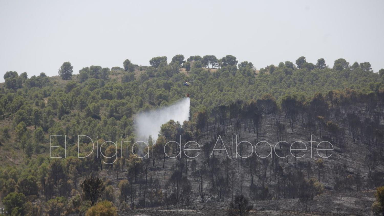 incendio forestal ferez albacete